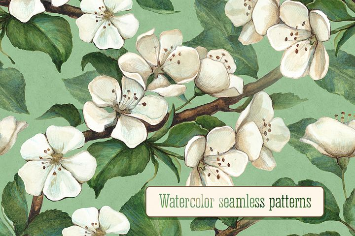 Illustrations of apple flowers. Seamless pattern design
