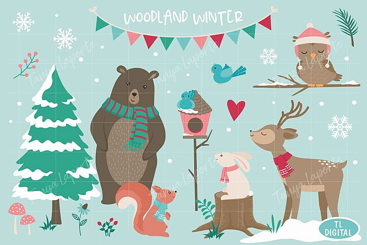 Woodland Winter Graphic Collection - 40 Illustrations - PNG