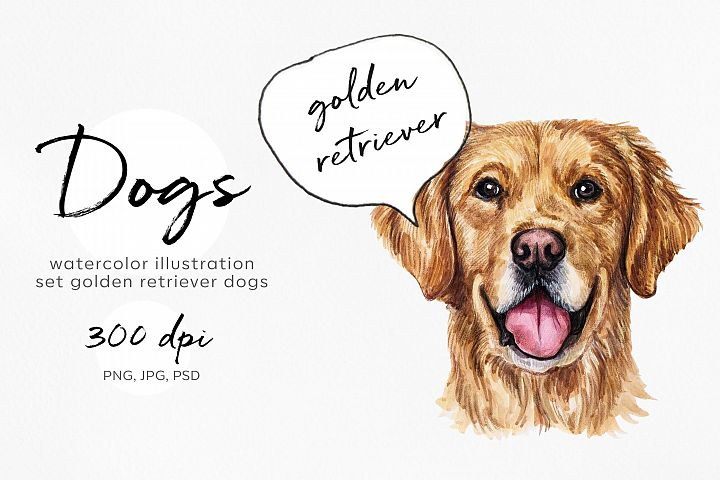 Golden Retriever. Watercolor set dog illustrations. 6 dogs