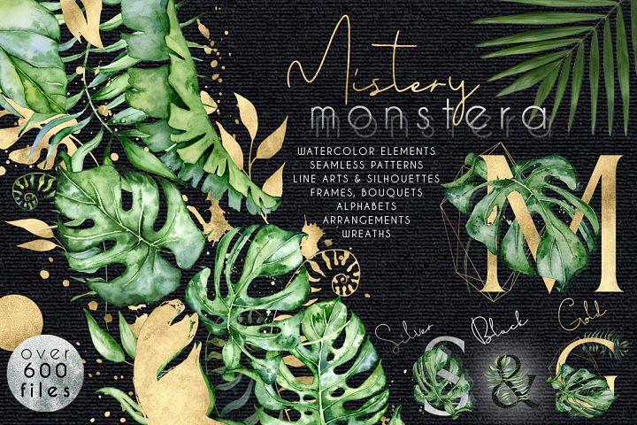 Mistery Monstera