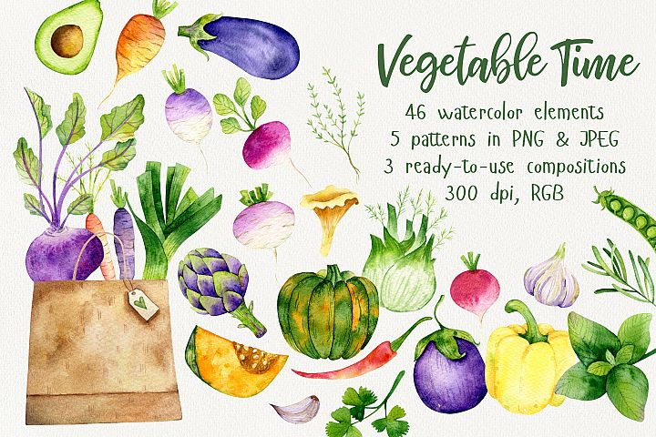 Vegetable Time Watercolor Set