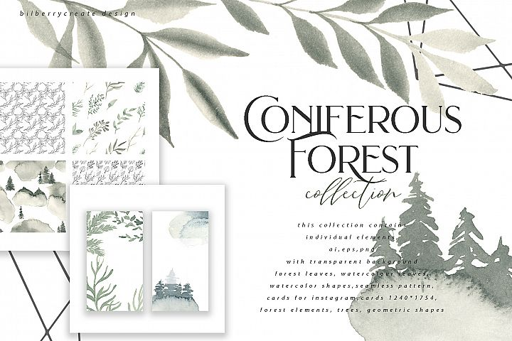 Coniferous Forest art collection
