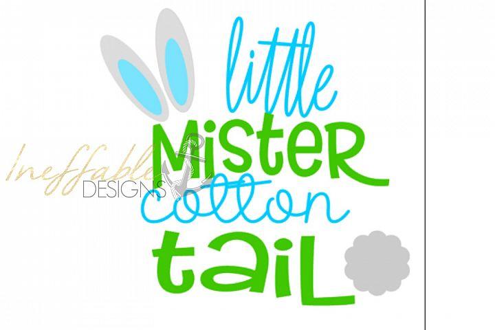 little mister cotton tail