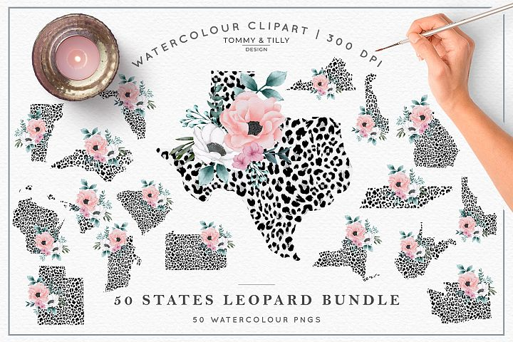 Leopard Print 50 States Bundle - Clipart PNG Sublimation