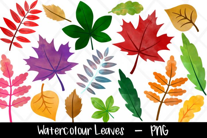 Watercolor Leaf Clipart Bundle