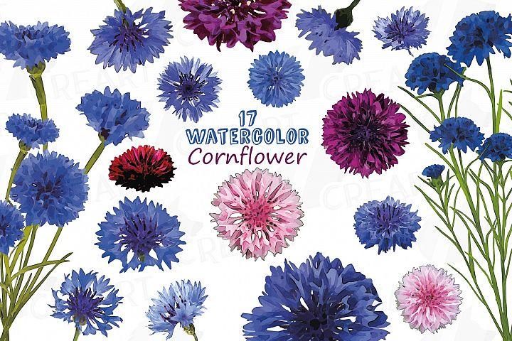 Cornflower watercolor clip art pack, bachelors button
