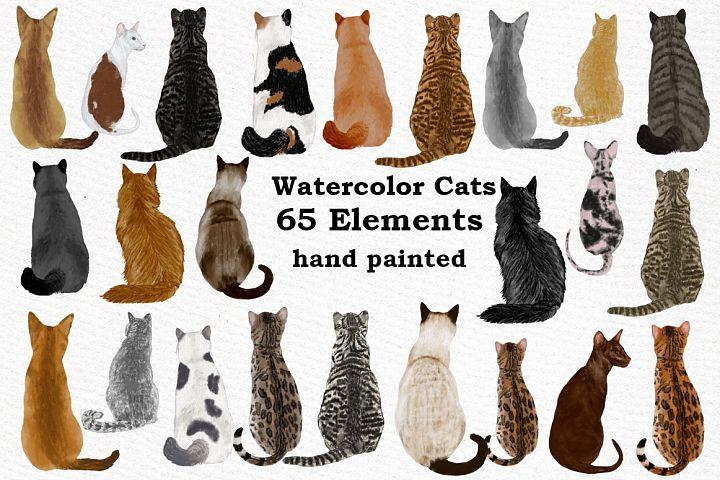 Cat Clipart, WATERCOLOR CATS, Cat breeds,Pet clipart, kitten