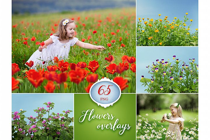 65 Flower Photo Overlays