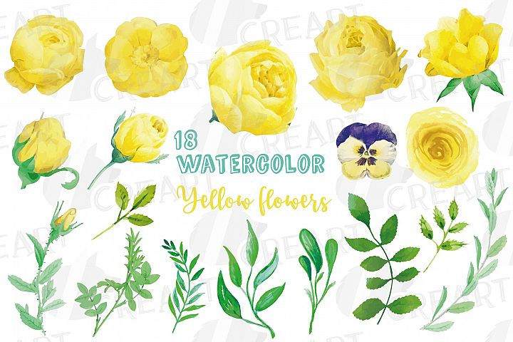 Yellow flowers and green leaves watercolor clip art pack