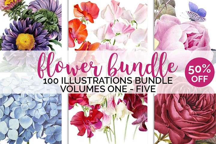 Watercolor Flowers Set Anthology 01 Bundle