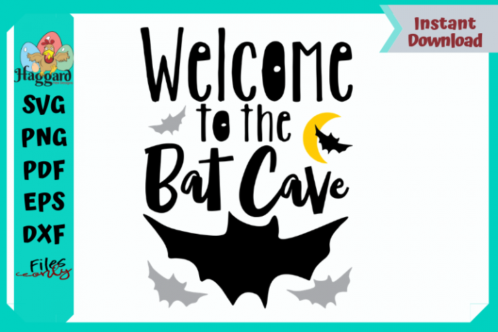Welcome to the Bat Cave