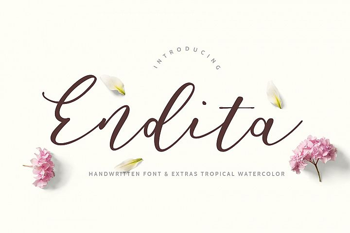 Endita Handwritten Font and Extras