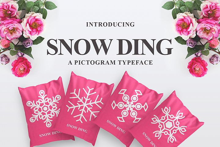 Snow Ding