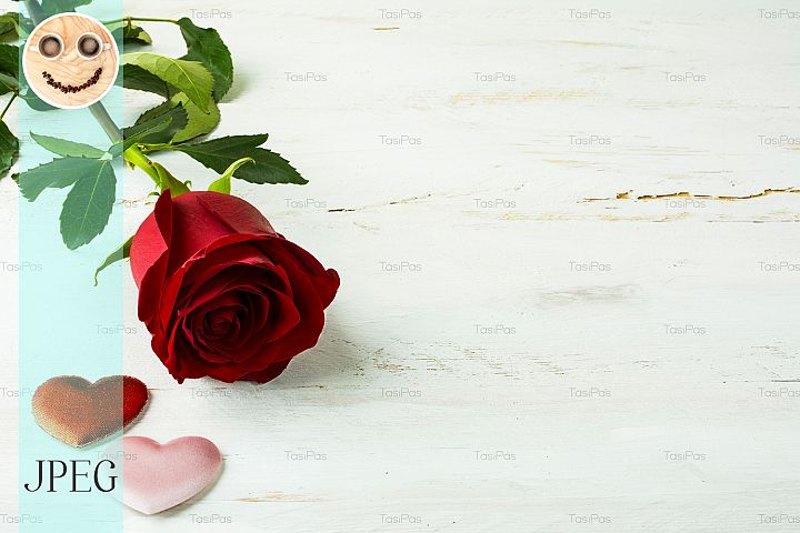 Valentines Day red rose background