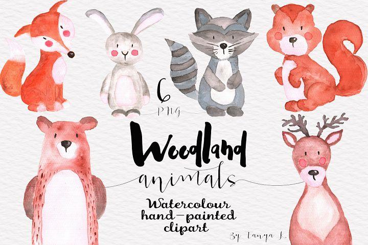 Woodland Animals Watercolor Set
