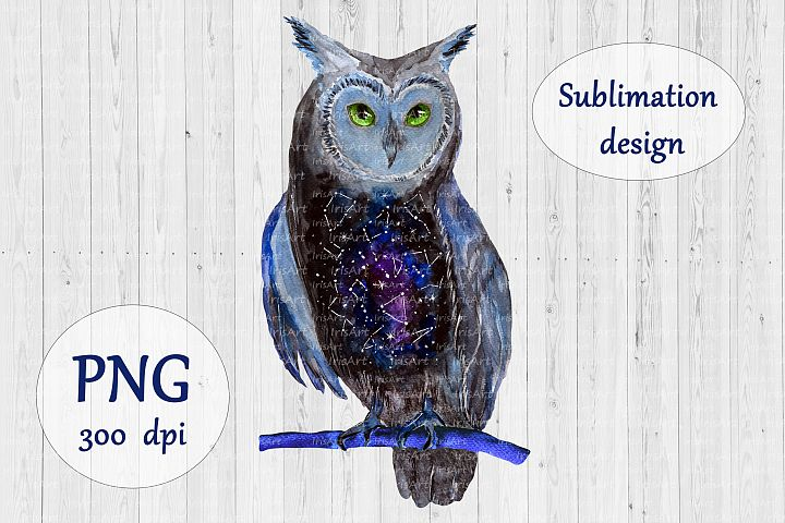 Galaxy Owl Sublimation Design - Watercolor Bird PNG
