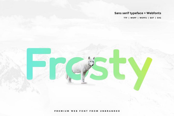 Frosty - Modern Typeface with WebFonts