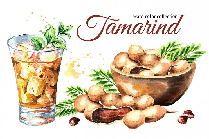 Tamarind. Watercolor collection
