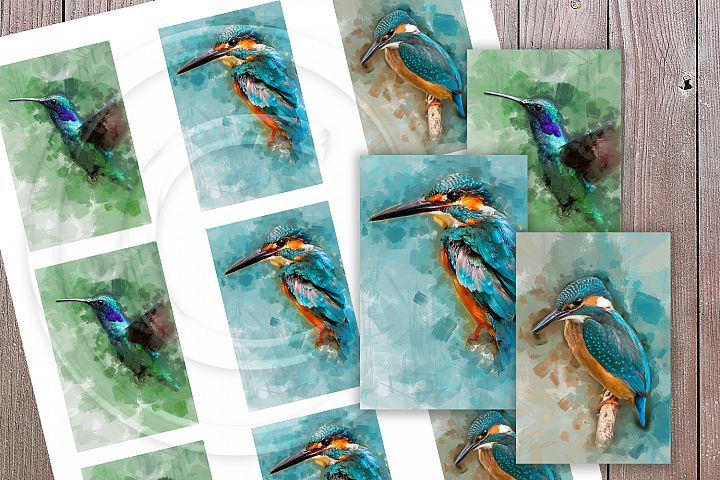 Painted Birds Collage Sheet