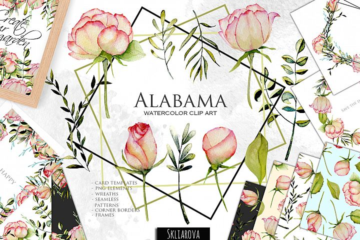 Alabama roses. Watercolor collection.