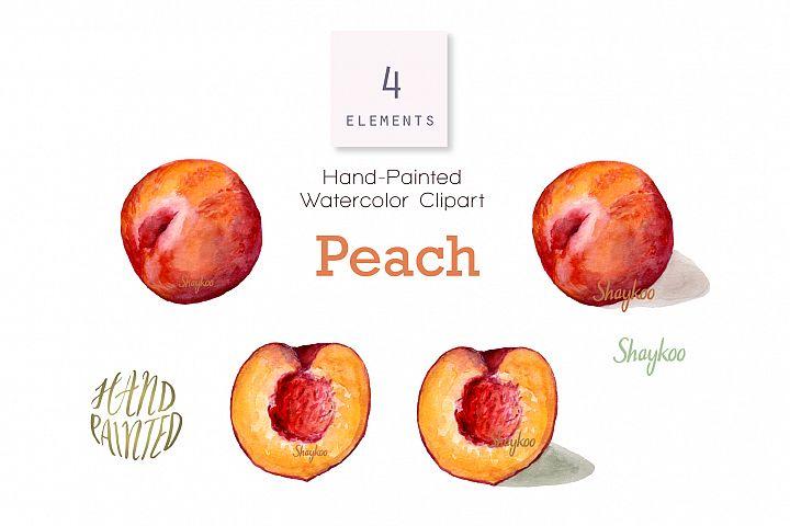 Peach Watercolor Clipart, Whole And Half Peach Illustration