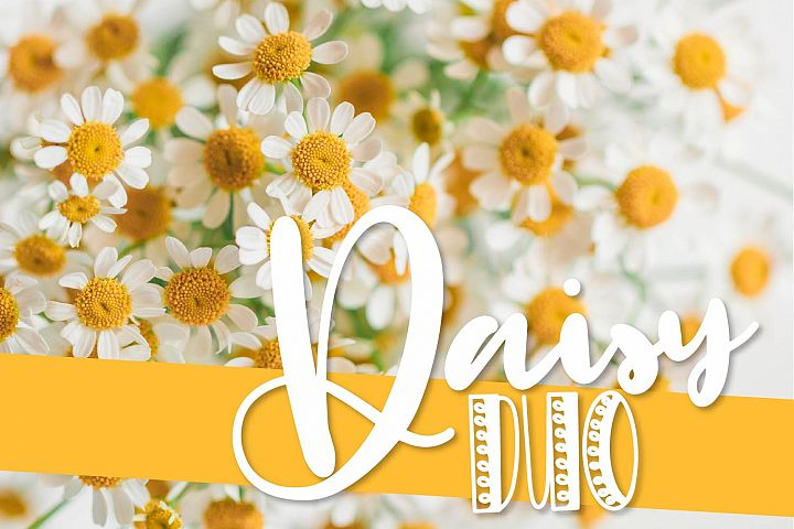 CLN- Daisy Duo - A Happy Font Pair Perfect For Spring!