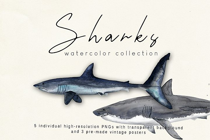 Sharks. Watercolor collection