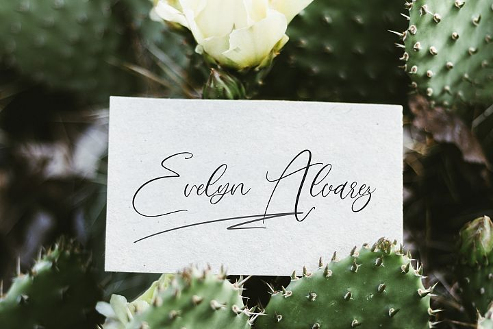 Love Mango. Script font with doodles example image 8