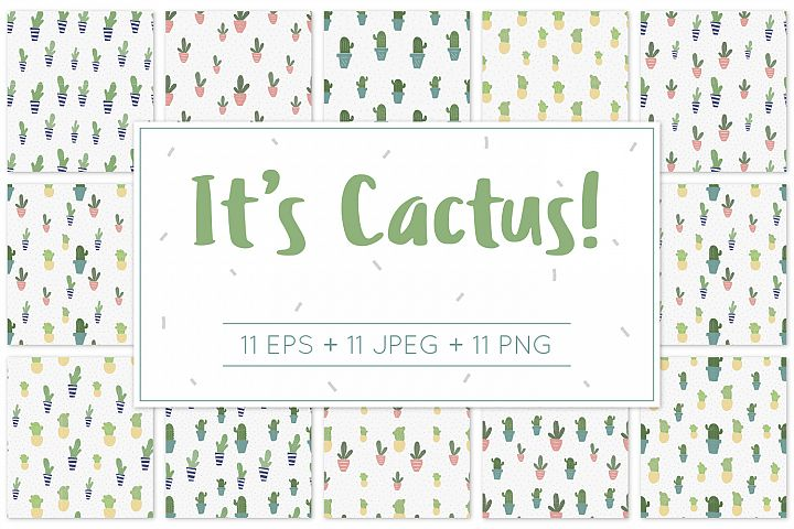 Its Cactus! - Pattern