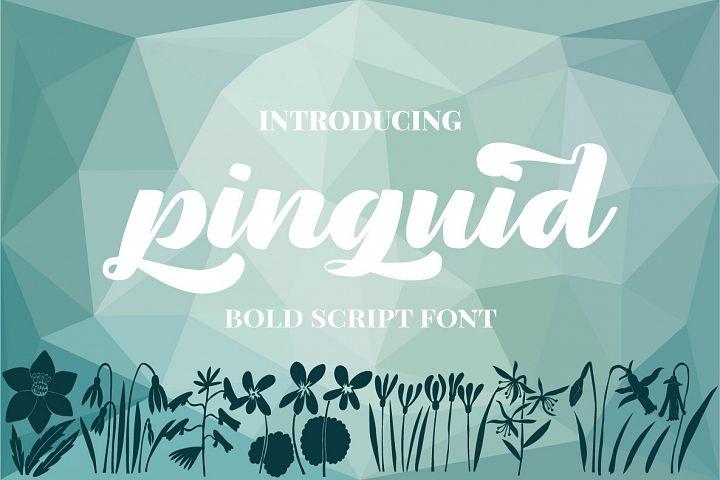 Pinguid | Bold Script Fonts