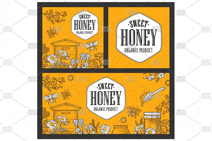 Horizontal and square posters honey Vector engraving