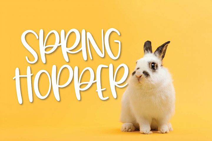 Spring Hopper - A Fun Hand Lettered Font!