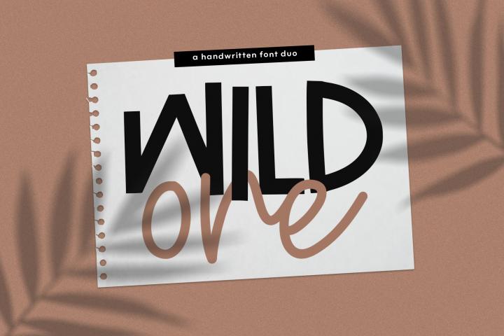 Wild One- Handwritten Script & Print Font Duo