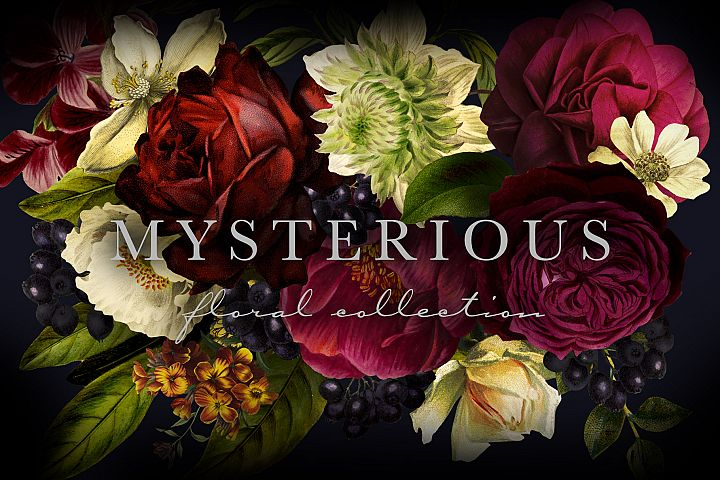 Mysterious Floral Collection Clip Art Graphics