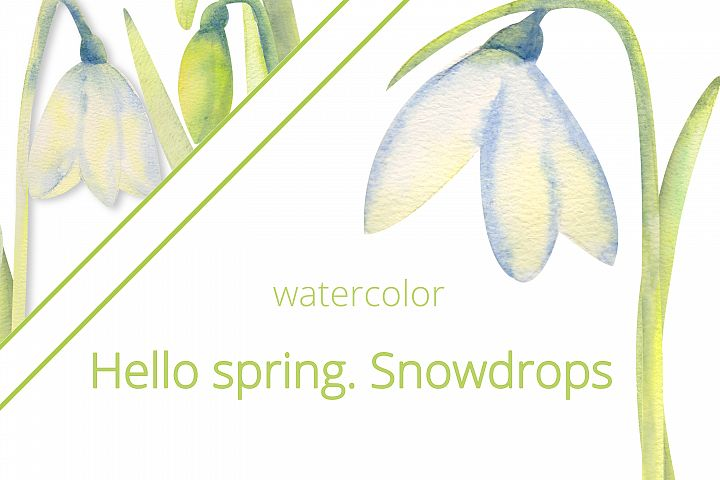 Hello, spring! Romantic frames with snowdrops