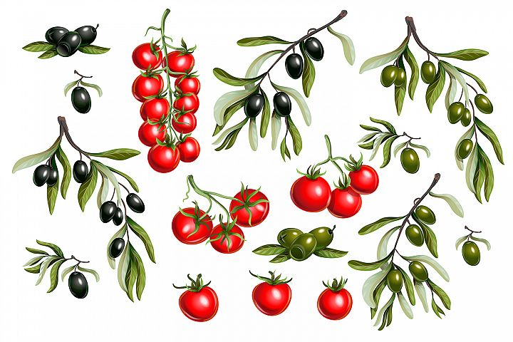 Vector olives and tomato cherry isolated