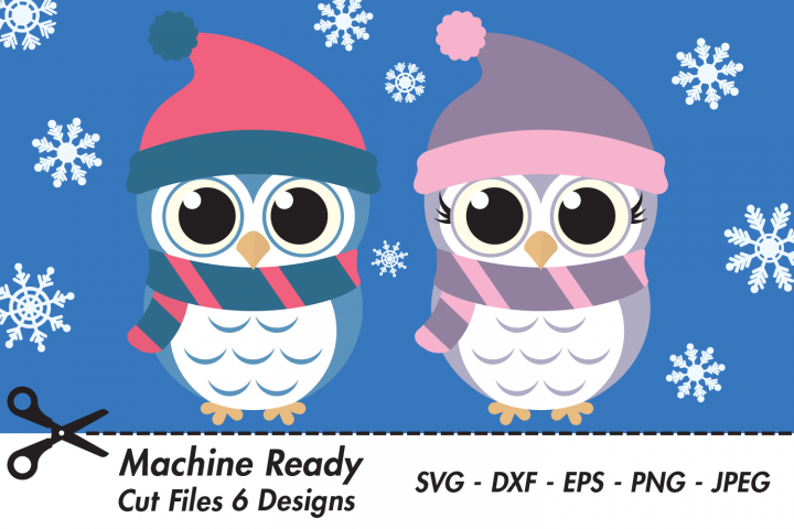 Cute Winter Owl Bundle SVG Cut Files, Woodland Baby Owls