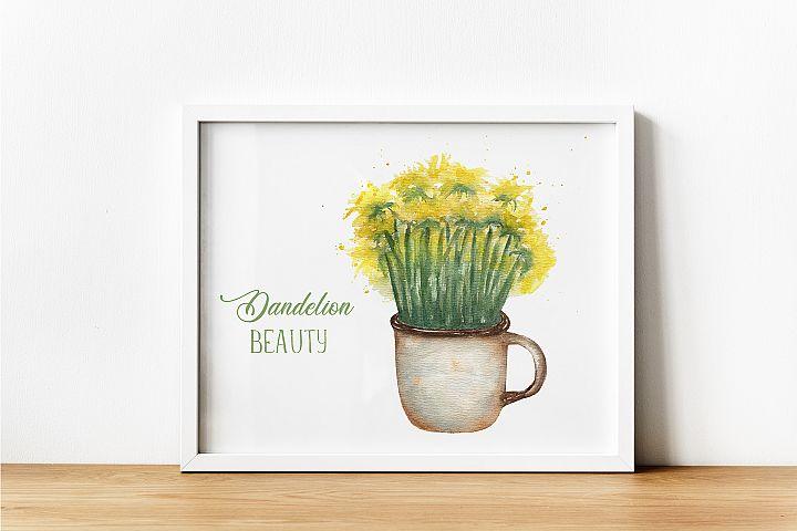 Dandelion beauty