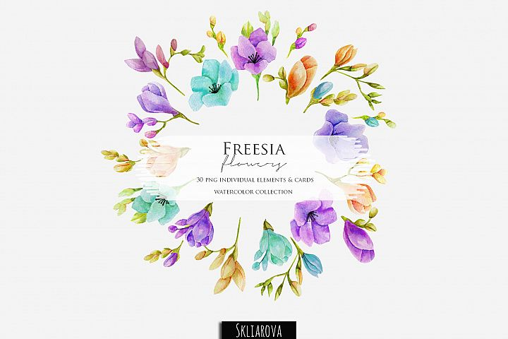 Freesia. Elements & cards