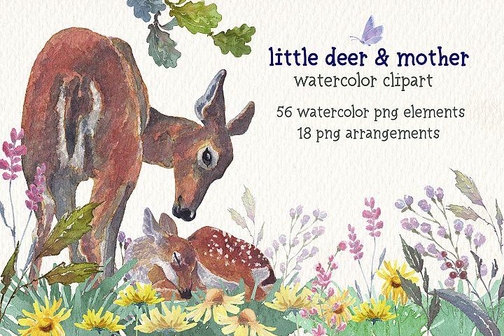 little deer & mother watercolor clipart set