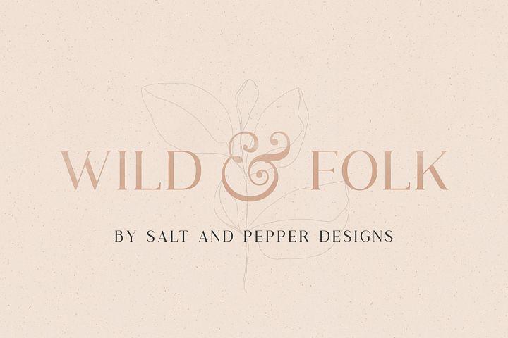 Wild & Folk Serif Font