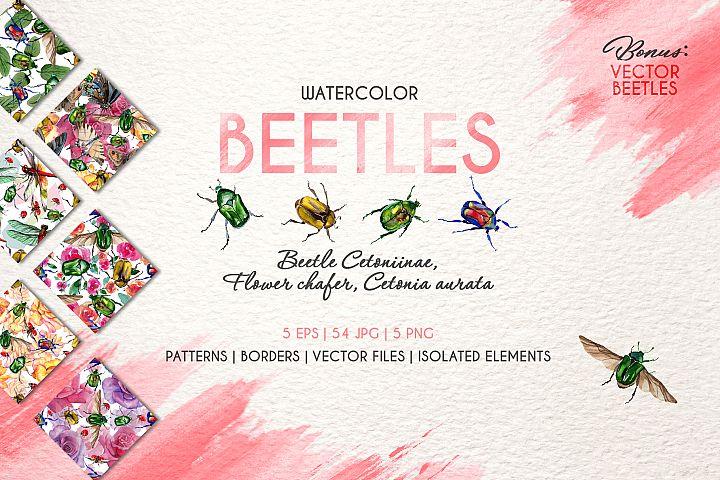 Beetle Cetoniinae,Flower Watercolor png