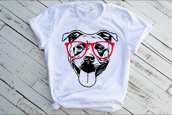 Pit bull Whit Glasses SVG mask pitbull 1495s