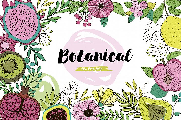 Botanical logos & illustrations