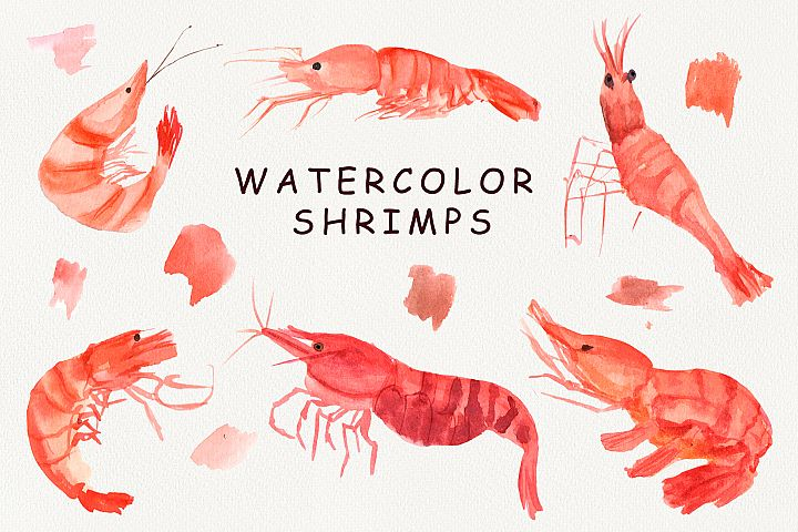 Watercolor Shrimps clipart.