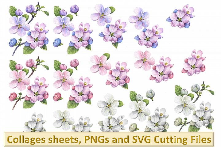 Woodland Blossom clipart bundle with card making kits CU