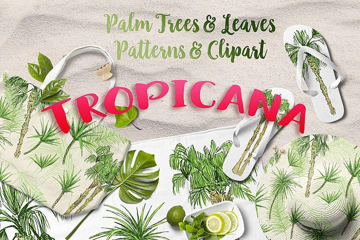 Tropicana - Palm Trees & Leaves Set