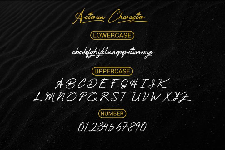 Acterum Signature Font - 26 Extra Swash example image 8