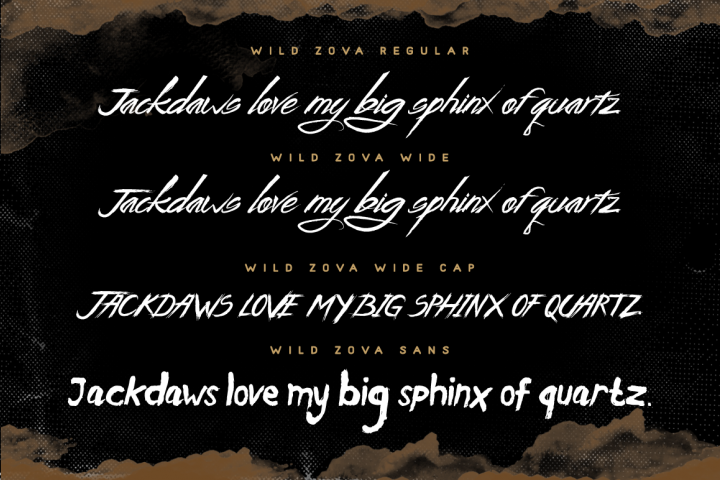 Wild Zova Family - Free Font of The Week Design4