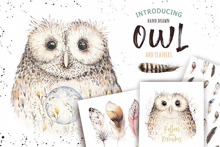Watercolor owl & feathers collection